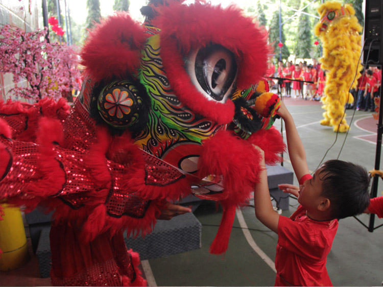 Giving angpao to Barongsai