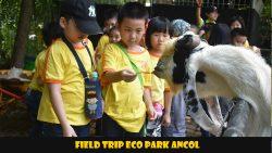 FIELD TRIP ECO PARK