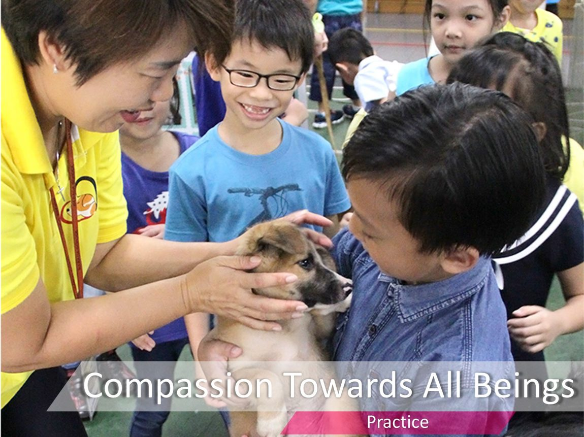 Compassion Towards All Being